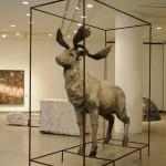 「輪から外れた 命の景色」樹脂、砂、鉄パイプ 工藤 理瑛 2012